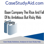 BAAN COMPANY THE RISE AND FALL OF ITS AMBITIOUS BUT RISKY WEB STRATEGY